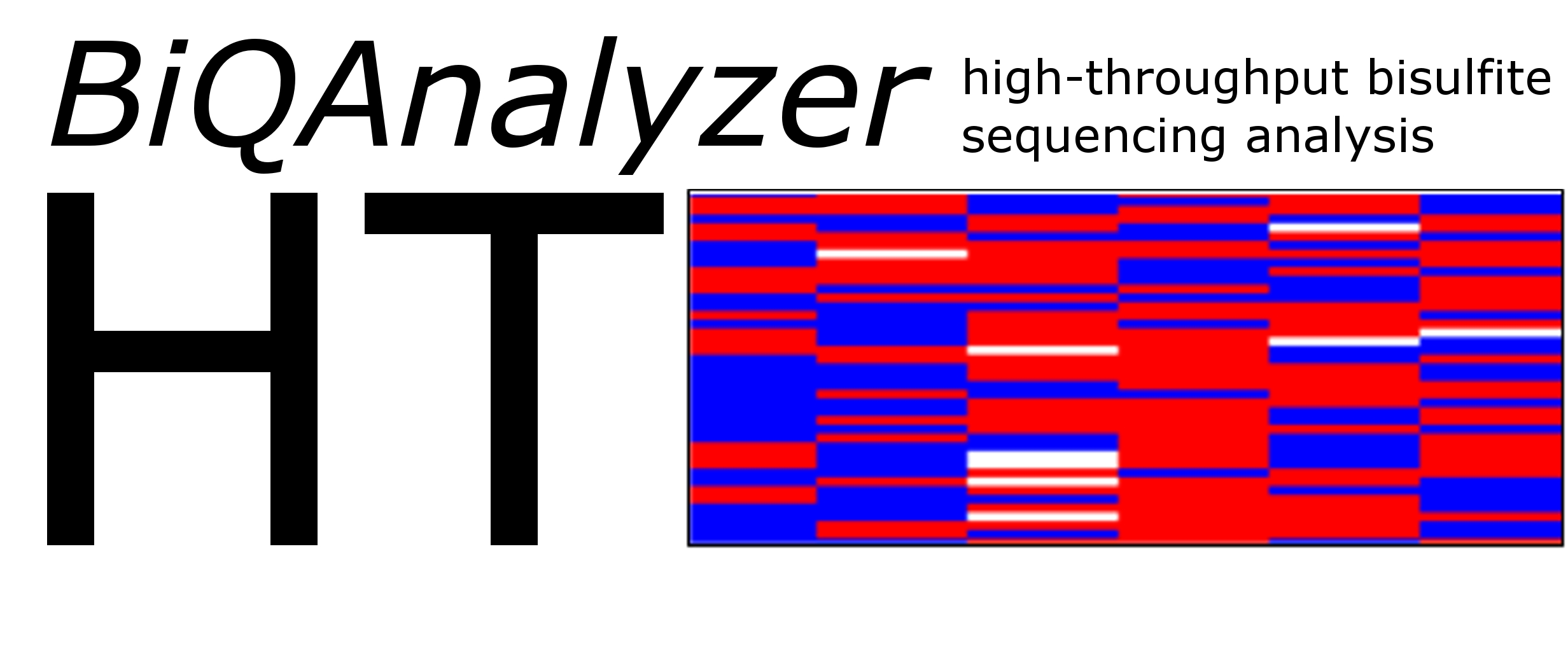 biq-analyzer-ht Logo